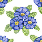 Hand-drawn pattern with primulas on white — Stock Photo
