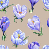 Hand-drawn pattern with crocuses on pale background — Stock Photo