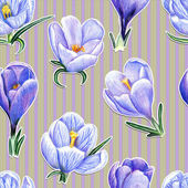 Hand-drawn pattern with crocuses on striped background — Stock Photo