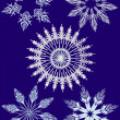 Pattern of snowflakes on a blue background — Stock Vector