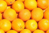 Many fresh orange — Stock Photo
