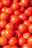 Many fresh red ripe tomatos — Foto Stock
