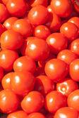 Många färska röda mogna tomater — Stockfoto
