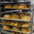 Fresh hot buns in handcart from oven — Stock Photo