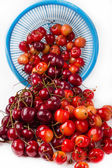 Fresh cherry with drop the water in blue colander — Stock Photo