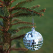 Mirror ball hanging on a Christmas tree branch — Stock Photo