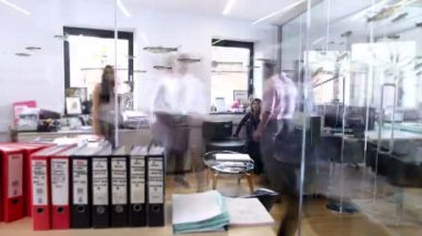 Business team working together in the office — Stock Video