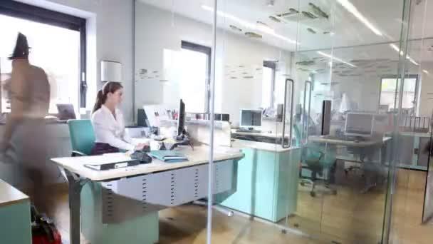 Atractivas moda jóvenes profesionales en el trabajo en oficina ocupada — Vídeo de stock