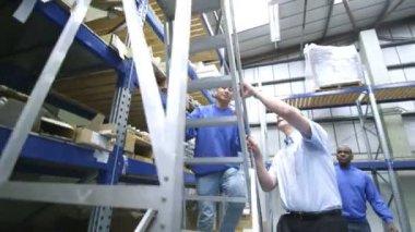 Equipe de trabalhadores masculinos em um armazém ou fábrica — Vídeo stock