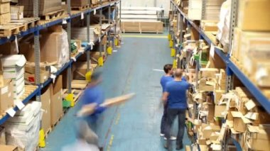 Workers in warehouse preparing goods for dispatch — Stock Video