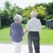Romantic senior couple dancing together outdoors on a summer day — Stock Video