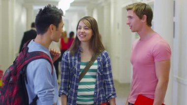 Students chatting together in hallway — Wideo stockowe
