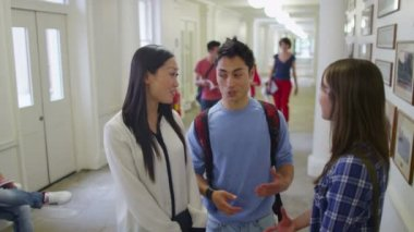 Students chatting in hallway — Stock Video