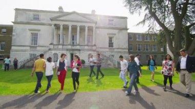 Mixed ethnicity students walk around university — Stock Video