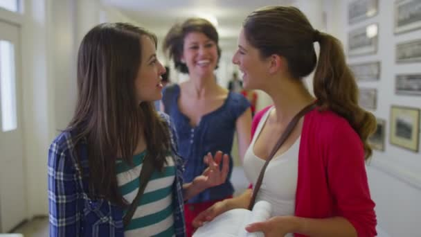Female students chat as they walk — Vidéo