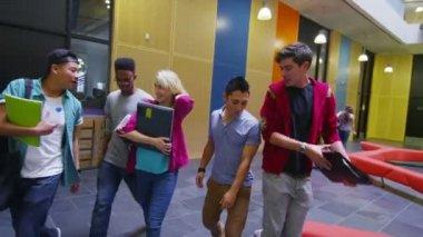 Alunos andando pela universidade — Vídeo stock