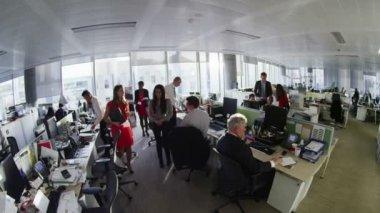Diverse zakelijke groep werken samen in grote moderne stadskantoor — Stockvideo