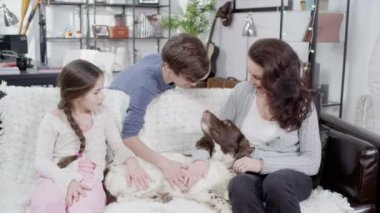 Mother and children stroking pet spaniel — Stock Video
