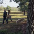 Couple walking their dog in forest — Stock Video