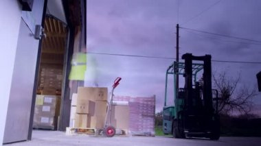 Warehouse workers loading pallets — Stock Video