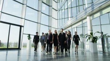 Business people in office building — Stock Video