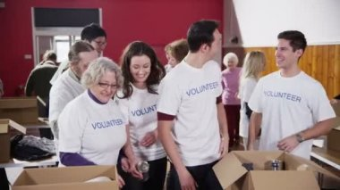 Mixed group of charity volunteers smile for the camera — Stock Video