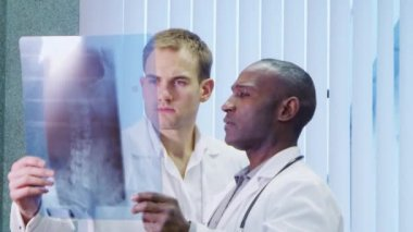 Two doctors looking at medical x ray — Stock Video
