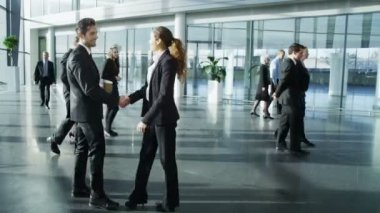 Businessman and businesswoman meet and shake hands — Stock Video