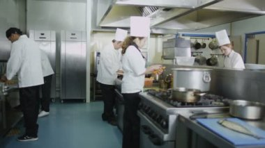 Chefs cooking food in commercial kitchen — Stock Video
