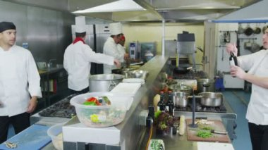 Team of professional chefs preparing food in a commercial kitchen — Stock Video