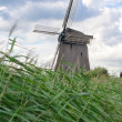 Photo: Mills in Holland, traditional and direct landmark of country