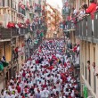 Festival of SFermin in Pamplona — Stock Photo #25779619