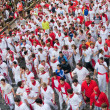 Festival of SFermin in Pamplona — Stock Photo #25780111