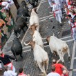 Festival of SFermin in Pamplona — Stock Photo #25780159