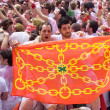 Stock Photo: PAMPLONA, SPAIN-JULY 6: with flag are having fun at the