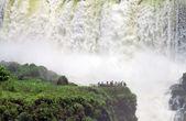 Iguazu fall — Stock Photo