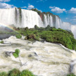 Iguazu Falls — Stock Photo #25830619