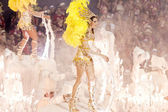 RIO DE JANEIRO - FEBRUARY 11: A woman in costume dancing on carn — Stockfoto