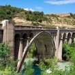Stock Photo: Bridge over River Gallego. autonomous region Aragon, Spain.
