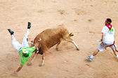 PAMPLONA, SPAIN - JULY 8: People having fun with young bulls at — Stock Photo