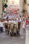 PAMPLONA, SPAIN-JULY 9: Bulls and men running in street during S — Stock Photo