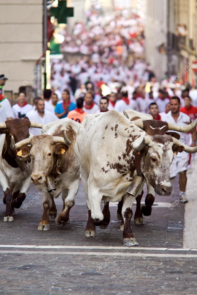 PAMPLONA, SPAIN-JULY 9: Bulls running in street during San Fermi ...
