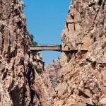 Royal Trail (El Caminito del Rey) in gorge Chorro, Malaga provin — Stock Photo #32670539