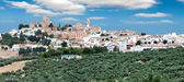 Espejo, Province Cordoba, Spain — Stock Photo