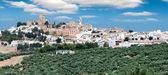 Espejo, Province Cordoba, Spain — Stock Photo
