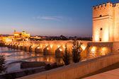 Romeinse brug en de guadalquivir rivier, grote moskee, cordoba, spai — Stockfoto