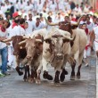 PAMPLONA, SPAIN-JULY 9: People run from bulls on street during S — Stock Photo #36484203