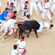 PAMPLONA, SPAIN - JULY 9: People having fun with young bulls at — Stock Photo #36484243