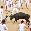 PAMPLONA, SPAIN - JULY 10: People having fun with young bulls at — Stock Photo #36484299