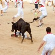 Stock fotografie: PAMPLONA, SPAIN - JULY 10: People having fun with young bulls at